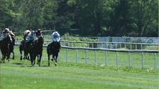 Pferderennbahn 15