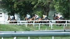 Pferderennbahn 18