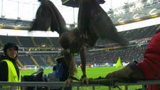 Adler 02