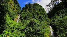 Wasserfall im Urwald 01