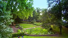 Park im Sommer - Drohnen Aufnahme 01
