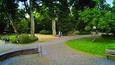 Park im Sommer - Drohnen Aufnahme 02