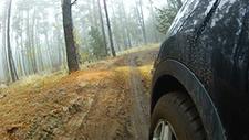 Geländewagen fährt durch Wald 01