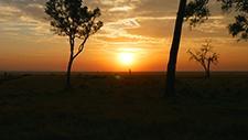 Sonnenuntergang über der Serengeti 05