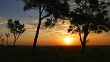 Sonnenuntergang über der Serengeti 06