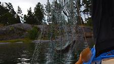 Fischer holt Netz ein 02